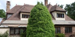 Thatched to Tiled conversion